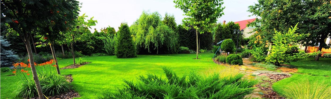 Landscaping Services Elgin Il Glc Lawn Care